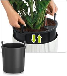 Pflanzeinsatz