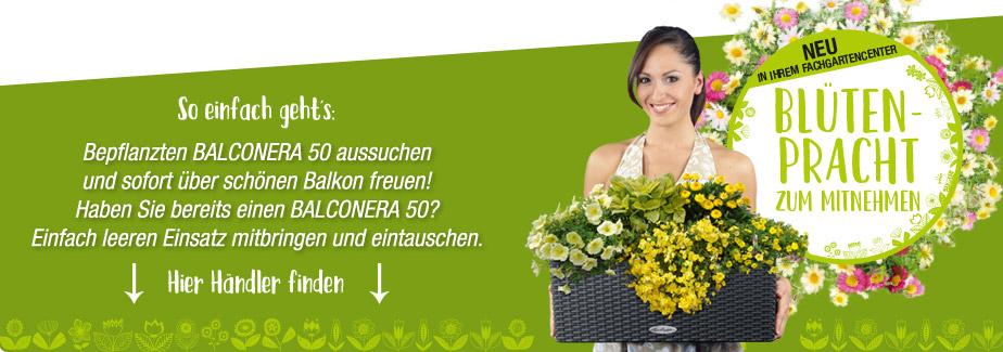 Bepflanzten BALCONERA aussuchen und sofort über schönen Balkon freuen. Haben Sie bereits einen BALCONERA 50? Einfach leeren Einsatz mitbringen und eintauschen