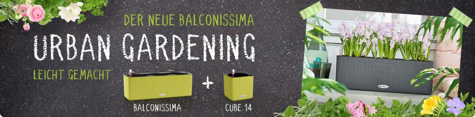 Der neue BALCONISSIMA