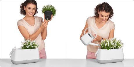 YULA Pflanztasche Anwendung Dochtspieß