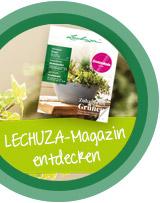 Jetzt Themenseite zum LECHUZA-Magazin entdecken